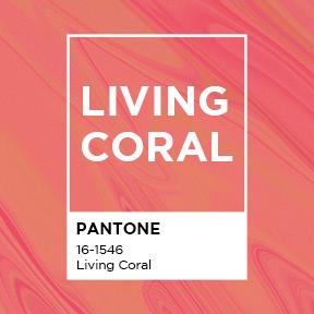 2019 올해의 컬러 'Living Coral' 탐구생활